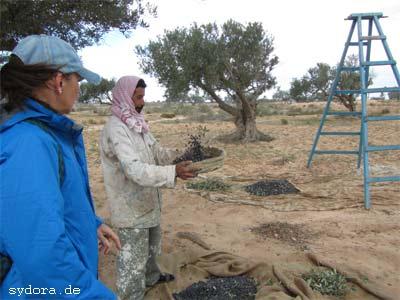 Nelia Sydoriak-Rauch bei einem Gespräch bei der Olivenernte auf Djerba