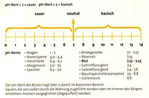 pH-Wert im menschenlichen Körper