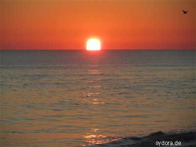 Sonnenaufgang in Nordafrika